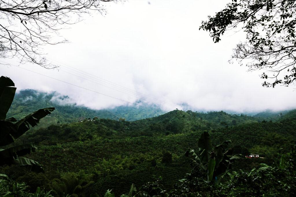 Kaffee Landschaft Berg